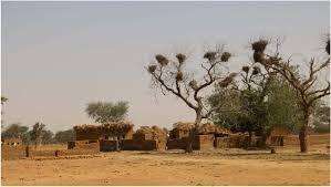 Mali: More than 800 displaced after attack on Sobanou-Dah and Djoumba-Peulh villages