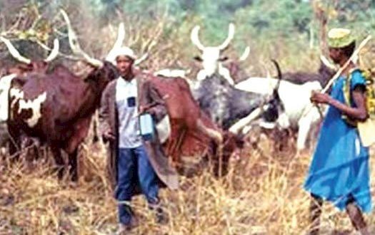Attah of Aiyede Kingdom to install Fulani as chief