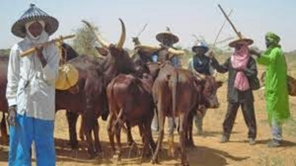 Plight of Fulani herders in FCT
